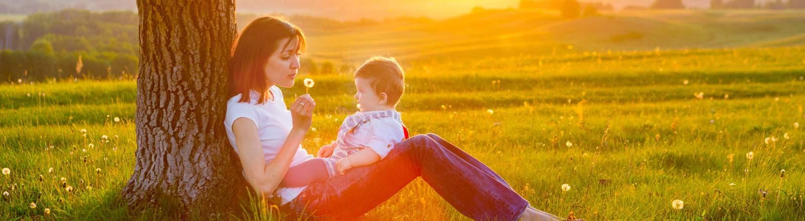 Alivio de la alergia y de la sinusitis