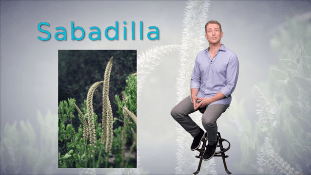 Descubra los remedios de la naturaleza | Sabadilla